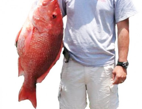 Red Snapper Season Ends but there are plenty of fish left to catch!